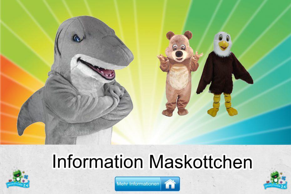Information-Kostueme-Maskottchen-Karneval-Produktion-Firma-Bau