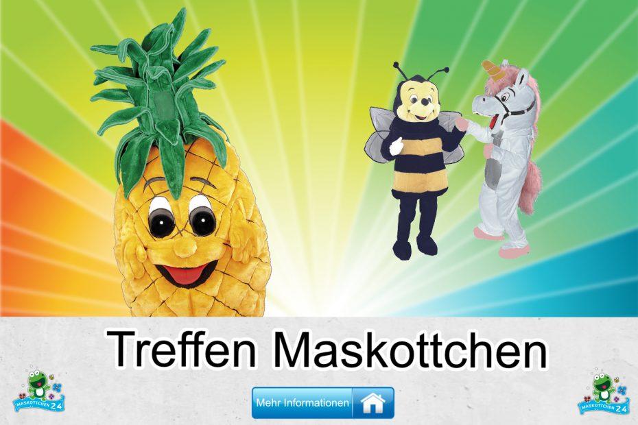 Treffen-Kostueme-Maskottchen-Karneval-Produktion-Firma-Bau