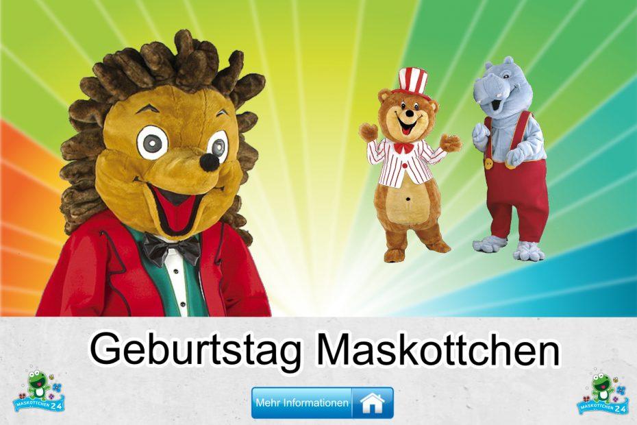 Geburtstag-Kostueme-Maskottchen-Karneval-Produktion-Firma-Bau