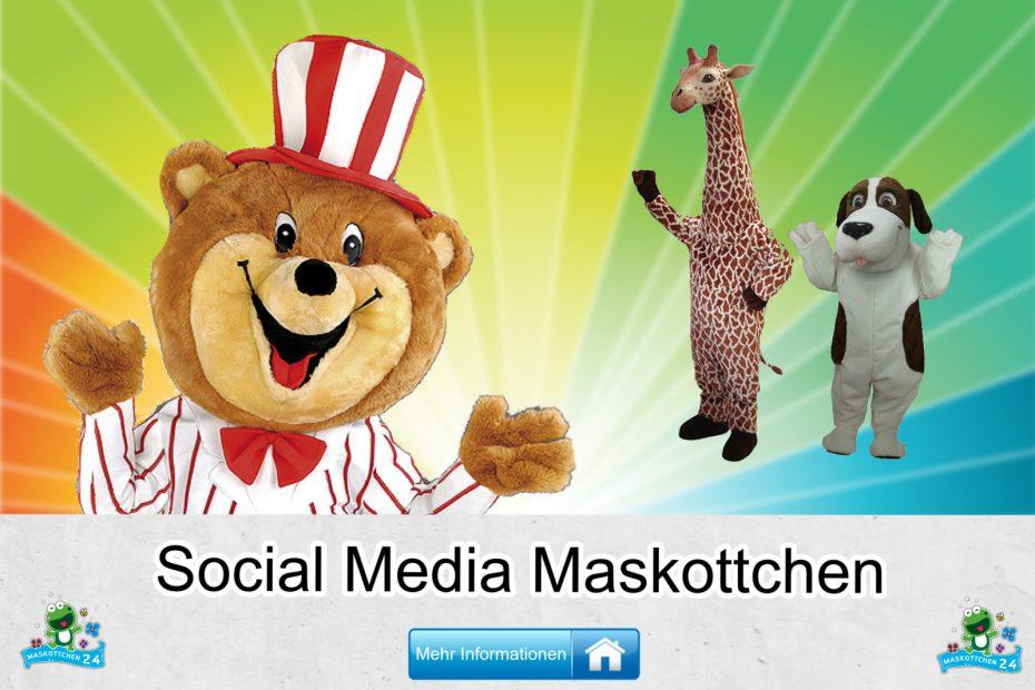 Social-Medien-Kostueme-Maskottchen-Karneval-Produktion-Firma-Bau