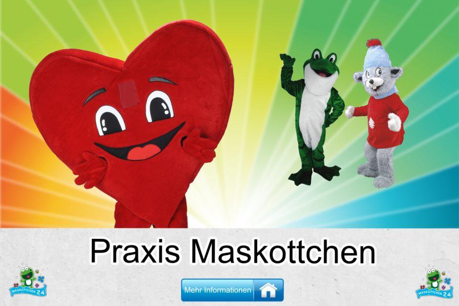 Praxis-Kostueme-Maskottchen-Karneval-Produktion-Firma-Bau