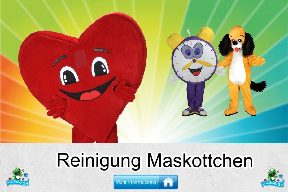 Reinigung-Kostueme-Maskottchen-Karneval-Produktion-Firma-Bau